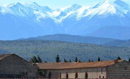 Location de Gîtes - Pyrénées Orientales - Mas du Domaine de Montcalm