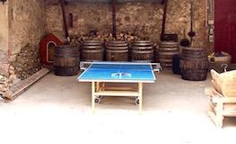 Gîte Pyrénées Orientales - Table de ping pong